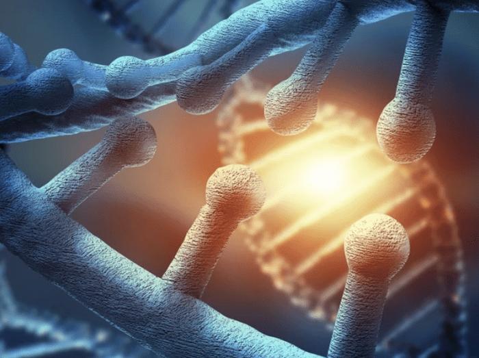 Stem Cell Treatment