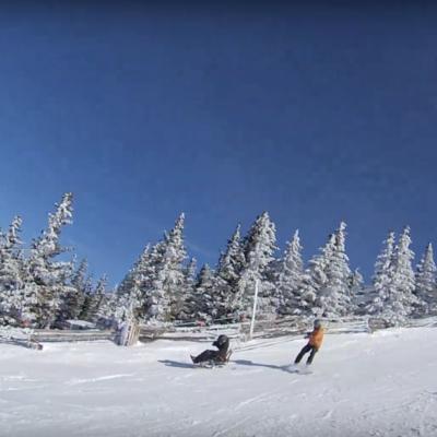 Mike Adams Skiing